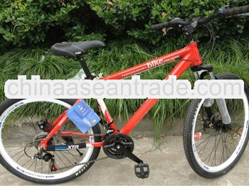 2013 mountain bike